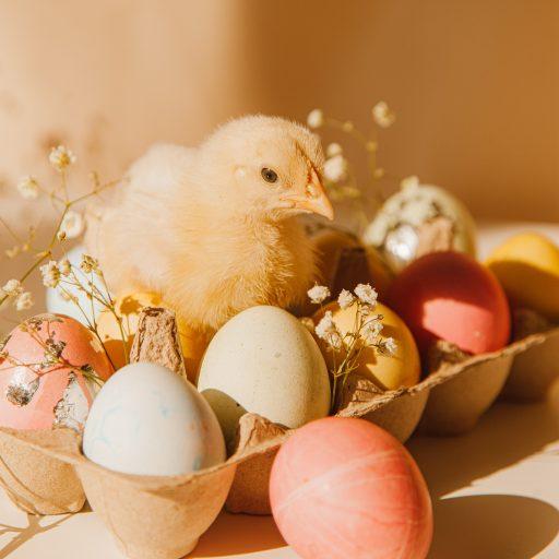 Wielkanoc w wersji light – podpowiadamy, co na świątecznym stole jest bezpieczne dla naszej talii