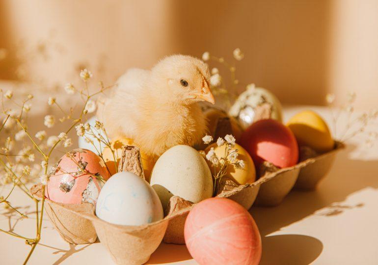 Wielkanoc w wersji light - podpowiadamy, co na świątecznym stole jest bezpieczne dla naszej talii