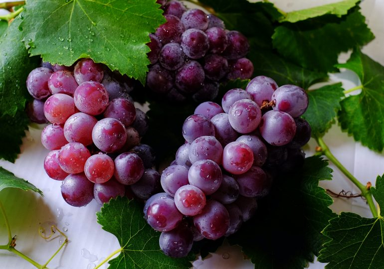 Winogrono dla urody. Podpowiadamy, jak na ich bazie można samemu stworzyć świetnie działające kosmetyki